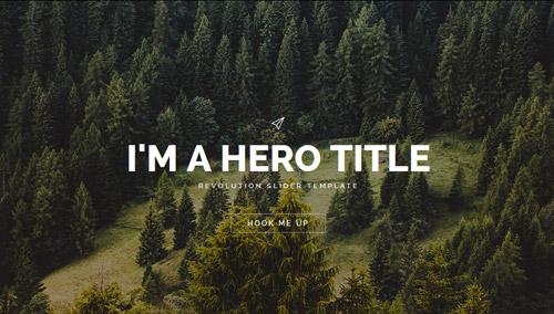 Image Hero